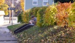 One of my neighborhood friends doing his homework on a warm autumn afternoon.