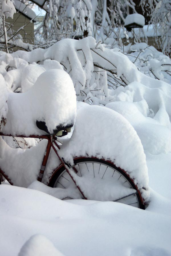 photo of snow on bicycle