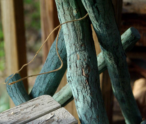 photo of peeling wooden tables and vine
