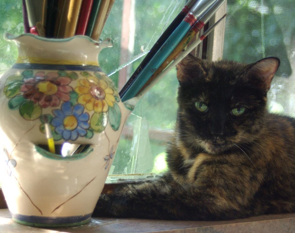 tortoiseshell cat with paintbrushes