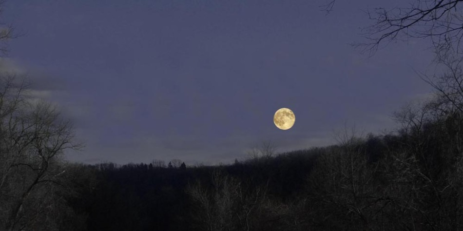 photo of moon over hill
